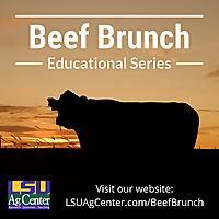 Beef Brunch Educational Series | LSU AgCenter