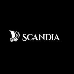斯坎迪亚公司博客上