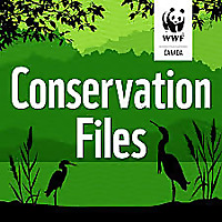 Conservation Files