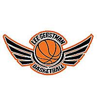 Lee Gerstman Basketball