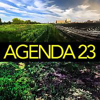 Agenda 23   Food Conversations Between Generations
