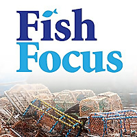Fish Focus » Seafood Industry News
