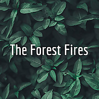 The Forest Fires
