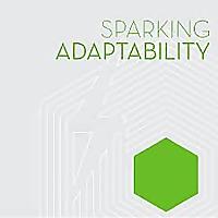 Sparking Adaptability