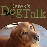 Derek's Dog Talk