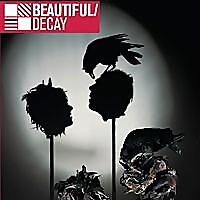 Beautiful/Decay   Art Design Blog