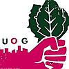 Urban Organic Gardener | Urban Gardening Blog