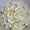 Fiori By Lynne - Wedding Flowers Blog