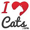iHeartCats.com All Cats Matter â¢