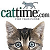 CatTime - The place for all things feline
