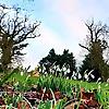 Huntstile Organic Farm - B&B accommodation, weddings, organic holidays & camping in Quantocks, Somer