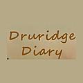 Druridge Diary