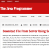 The Java Programmer
