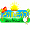 Best Ayurveda Kerala, India