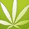 420 Evaluations - Medical Marijuana Blog