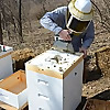 Southeastern Indiana Beekeepers Association