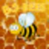 BG Bees
