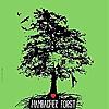 Hambach Forest
