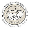 Pure Natural Newborn Photography