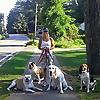 The Teacher's Pets | Professional Pet Sitting Blog
