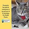 Guelph Cat Clinic Blog