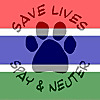 Vet Clinic Gambia | Youtube