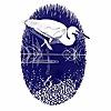 Carmarthenshire Bird Club