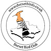 Dorset Birds