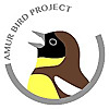 Amur Bird Project