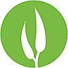 The Eucalypt Media Blog
