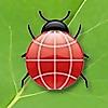North Fulton Pest Solutions | Pest Control Blog