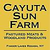 Cayuta Sun Farm