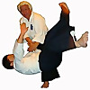 Aikido Federation (Singapore)