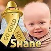 Shane's Future Days