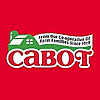The Cabot Blog