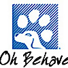 Dog Trainer Broward | Best Puppy Training Classes, South Florida