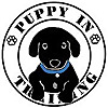 Puppy In Training | Train your pup like a service dog