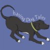 Chasing Dog Tales | Articles, Tutorials and Tips For Training your Dog