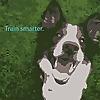 The Cognitive Canine | Innovative Reward-Based Dog Training.