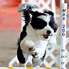 Ruffgers Dog University | Dog Training and Boarding