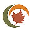 Maple Holistics | Essential Oils