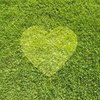 Lawn America | Lawn Care & Landscape Maintenance