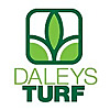 Daleys Turf | Lawn Turf Blog