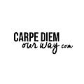 Carpe Diem OUR Way Family Travel Blog