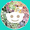 Reddit » Succulent Plants