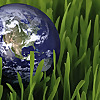 Easy Eco Blog - Easy ways to be Green - Eco Friendly and Save Green