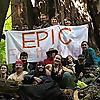 Environmental Protection Information Center (EPIC)