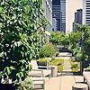 Twelve gardens ltd.