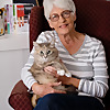 Catscapades   Cat stories and cat mysteries