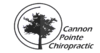 Cannon Pointe Chiropractic Northfield Chiropractic Blog
